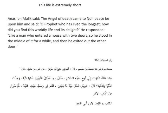 This life is extremely short