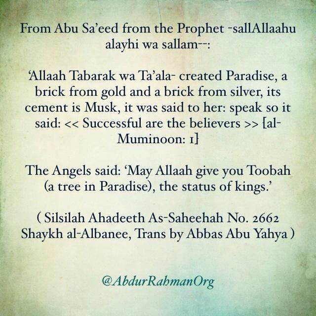 """Paradise said """"Successful are the believers"""""""